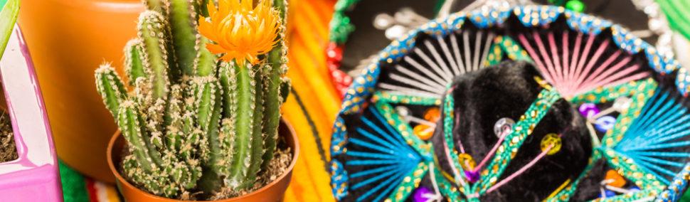 LOS MEXICANOS Y SUS BUENAS COSTUMBRES