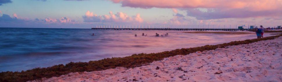 Cosas que hacer y ver en Playa del Carmen.